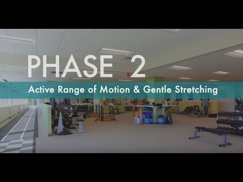 Rotator Cuff Exercises for Pain Relief   How to Strengthen Rotator Cuff   Phase 2