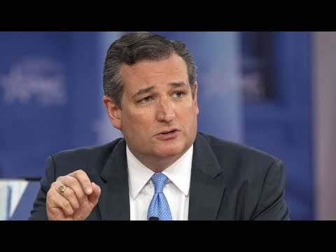 The Daily Signal Interviews Sen. Ted Cruz