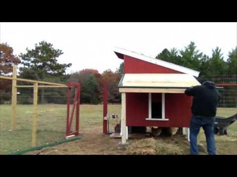 Chicken Coop Roof