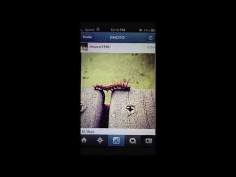 how to get hundreds of likes on Instagram 2013