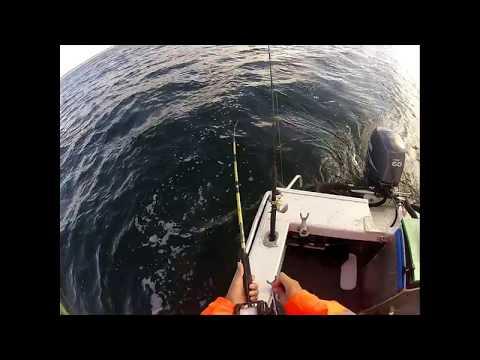 Trolling for Spanish mackerel