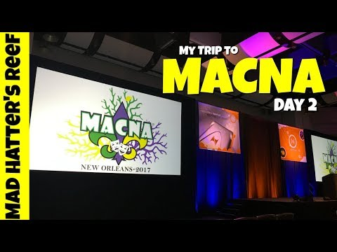 My Trip to MACNA | Day 2