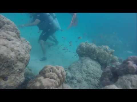 HavelockED - Trip to Andaman