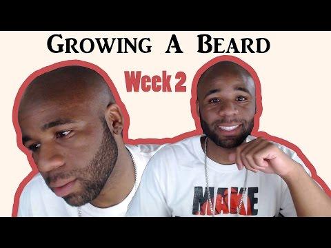 How To Grow A Beard | Week 2