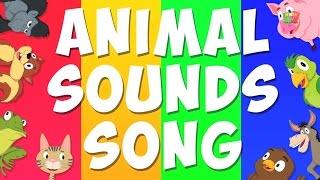 animale canzone suono per i bambini | imparare animali | nursery per bambini rima collezione