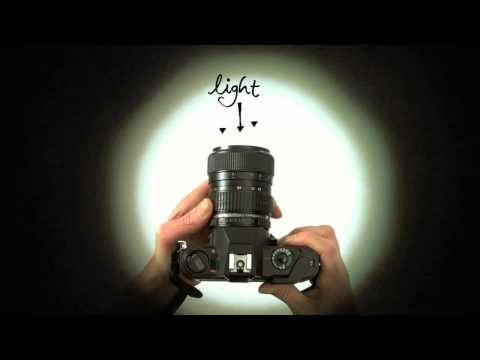 Know Your Camera - A Beginner's Photography Tutorial