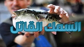 #x202b;وثائقي | سمك الفوغــو(القاتل) مذاق لا يقاوم#x202c;lrm;