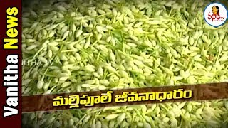 మల్లెపూలే జీవనాధారం | Special Story On Jasmine Flower Business | Vanitha News | Vanitha TV