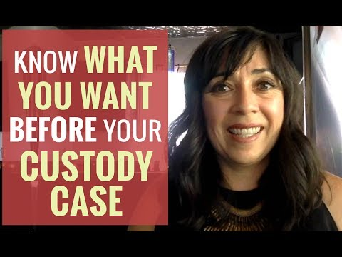 Before You Begin Your Custody Case Be Clear on What You Want