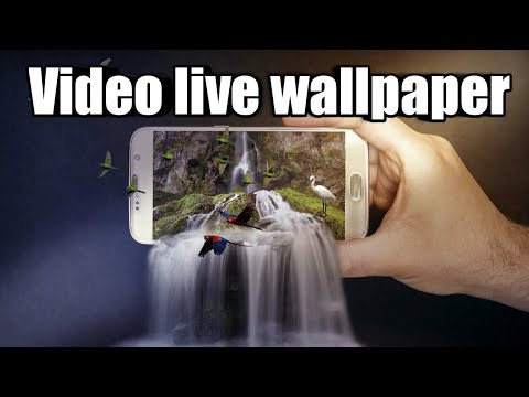 How to set video as live home screen wallpaper on any Android device ✓