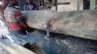 4 Wood cutting experts cutting wood like a pro/Aggressive way of cutting wood