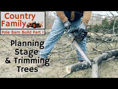 How to Build a Pole Barn Shop -  Part 1 Prepping and Planning - Tree Trimming