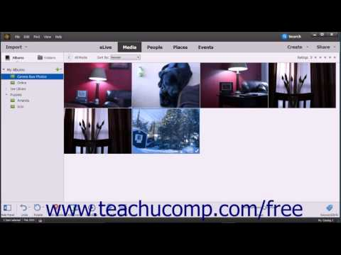 Photoshop Elements 15 Tutorial About Processing Camara Raw Files Adobe Training