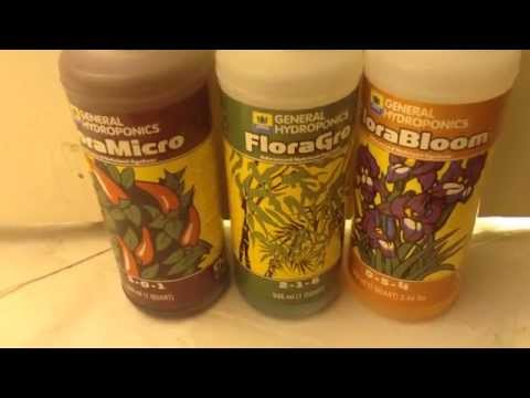General Hydroponics - Micro Grow Bloom Flora Series Review 2015
