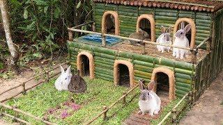 Building most beautiful mini pool on rabbits villa