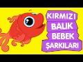 Download Kırmızı Balık | Bebek Şarkıları | Sevimli Dostlar Çizgi Film Çocuk Şarkıları 2016 | Adisebaba TV MP3,3GP,MP4