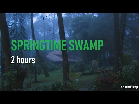 Night Rain In Springtime - 2 Hours of Crickets, frogs, rain, owls, chimes and Rain Sleep Sounds