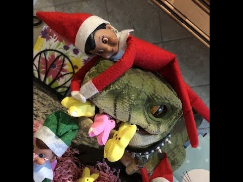Elf on the Shelf CAUGHT eating the Easter Bunny peeps!