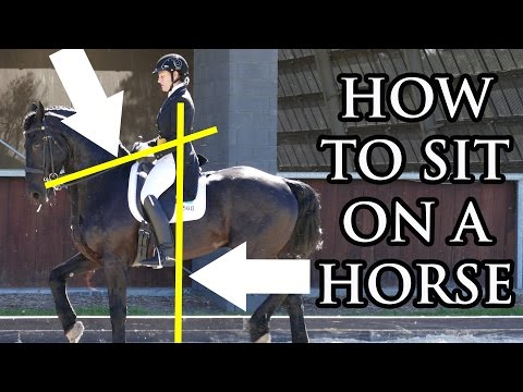 Improve Your Seat (Horseback Riding Perfect Seat) - Dressage Mastery TV Ep2
