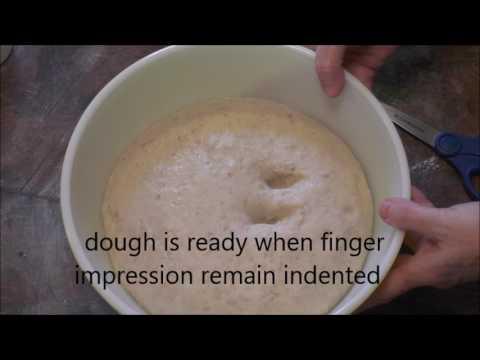 Fresh Homemade Yeast    HONEY OATMEAL BREAD