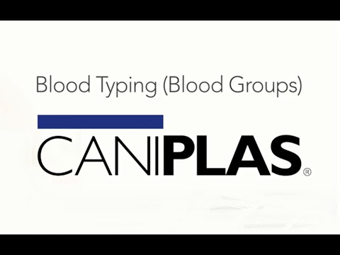 Caniplas - 'Blood Typing' (Alvedia Quick Tests) Video 1/7