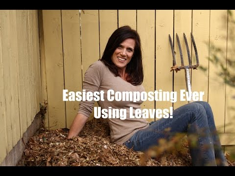 The Easiest Composting Ever - Using Leaves!