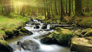 Relaxing Sounds, White Noise, Gentle Stream, Meditation, Nature Sounds, Water Sounds, ☯3285