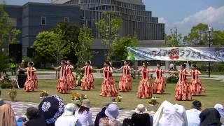 5月4日(祝) 市原ハワイアンフラフェスティバル@上総更級公園オープニングイベント