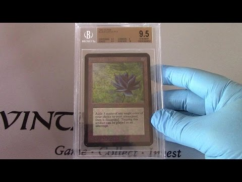 Alpha Black Lotus Opening Story and 10 of my graded beta cards! MTG Magic the Gathering