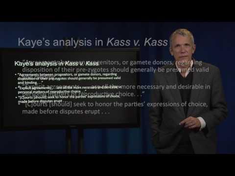 Contract Law 51 III Kass v Kass