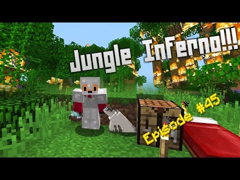 Minecraft Survival - How to find Ocelots [45]