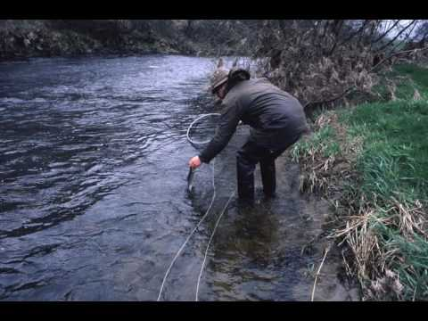 Ep  180 Dr  Malcolm Greenhalge Fly Fishing Characters