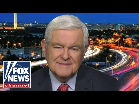 Gingrich reacts to Trump's explosive North Carolina rally