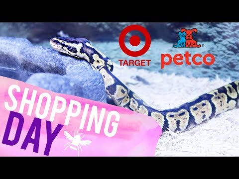 Shopping for Pet Supplies, Target Bags & Waffle Fries