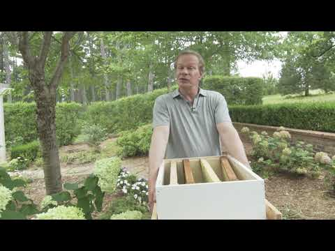 Beekeeping Safety