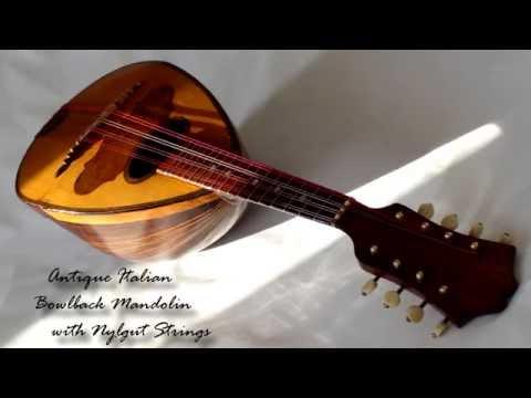 Mandolin with Nylgut strings