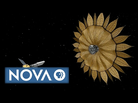 The Origami Revolution Preview | NOVA