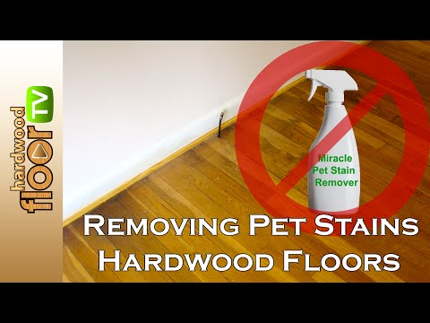 Remove Pet Urine Stains From Hardwood Floors