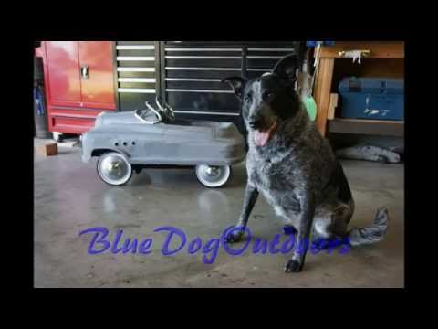 Building a Pedal Car, Part 1