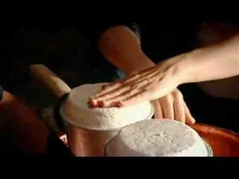 Gordon Ramsey - Maggot Cheese - F Word