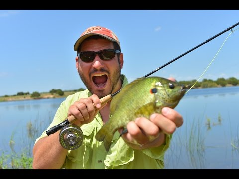 Fly Fishing for trophy blue gill at Doc Hollis Lake in South West Oklahoma