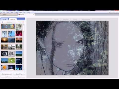 Using Multiple Exposure (Picasa 3)