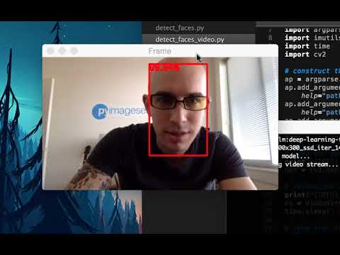 Face detection with OpenCV and deep learning