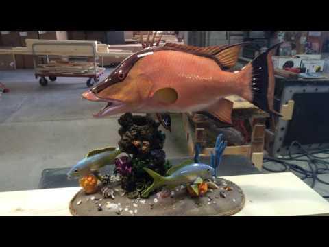 Gray Taxidermy Fishmounts, Custom fish reproductions