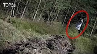 5 Extremely Creepy & Haunted Forests