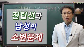 전립선과 남성의 소변문제