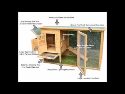 Building A Hoop House For Pastured Poultry -  How To Build A Small Chicken Coop Free Plans