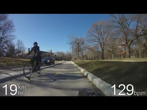 City Cycling - Toronto - Wellesley, Hoskin, and Harbord