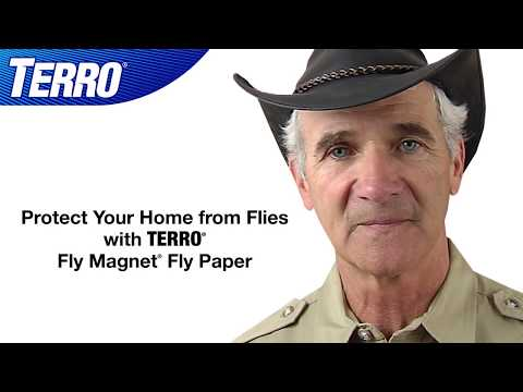 Capture & Kill Flies with TERRO Fly Magnet Fly Paper