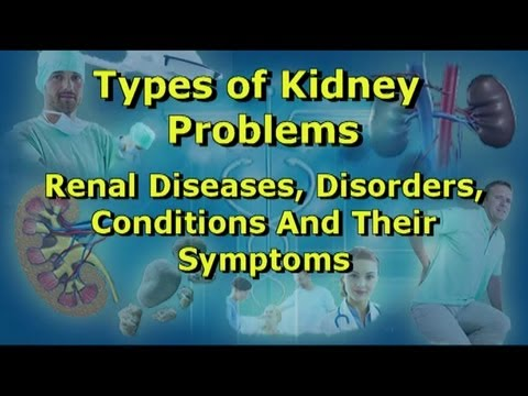 Kidney Problems - Diseases, Disorders, Conditions And Their Symptoms